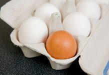 Brunt egg ikke sunnere