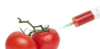 giftstoffer i mat