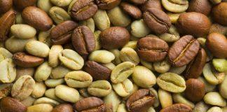 Grønne kaffebønner og slanking, fungerer det?