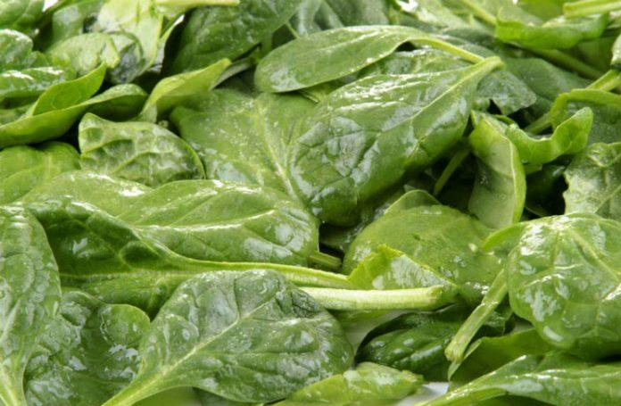 Spinat - en kilde til sunnhet